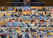 Photo collage of delegates at SCCR/31